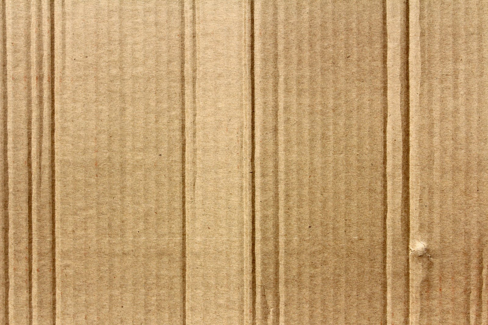 carboard box