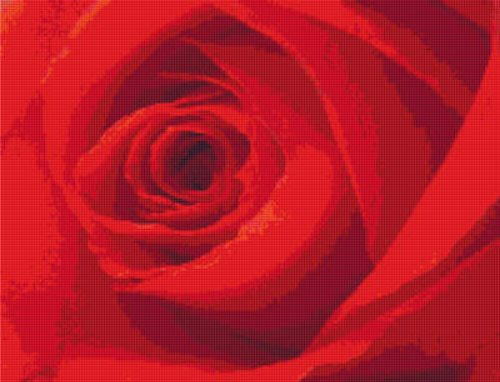 Single Red Rose Cross Stitch Pattern