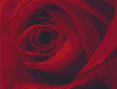 Single Deep Red Rose Cross Stitch Pattern