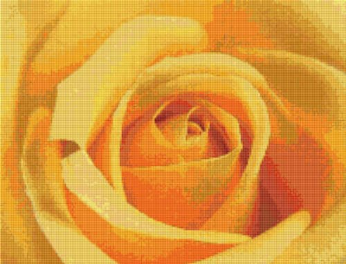 Single Yellow Rose Cross Stitch Pattern