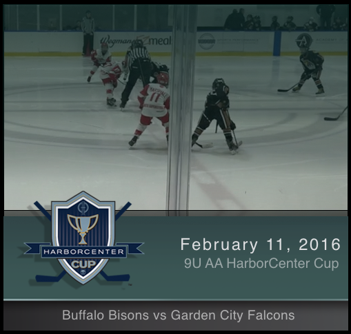 9U AA Buffalo Bisons vs Garden City Falcons