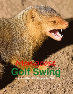 MONGOOSE GOLF SWING E-LOAD VID TUTORIAL - A SWING FOR ALL AGES