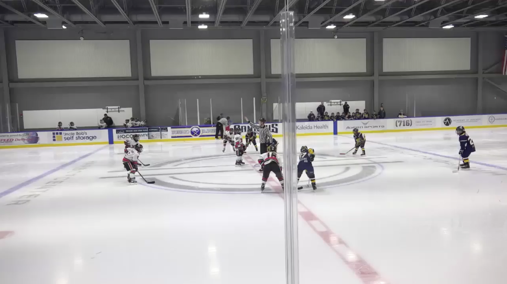 10U AA Flamborough Sabres vs Ashburn Xtreme 1 - Semifinal